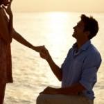 Svatební půjčka, příjmy