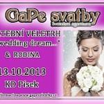 Svatební veletrh Písek 2013