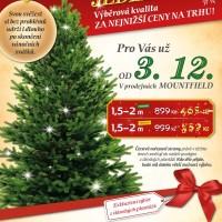 Nejlevnější Vánočních stromků 2014 - Jedle Kavkazská