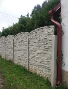 betovové ploty 7