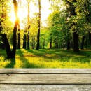 Dřevěná terasa krok za krokem
